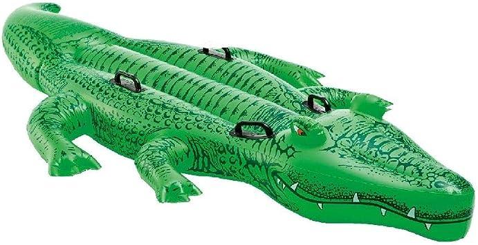 Intex 58562NP - Cocodrilo hinchable acuático & 4 asas 203 x 114 cm: Amazon.es: Juguetes y juegos