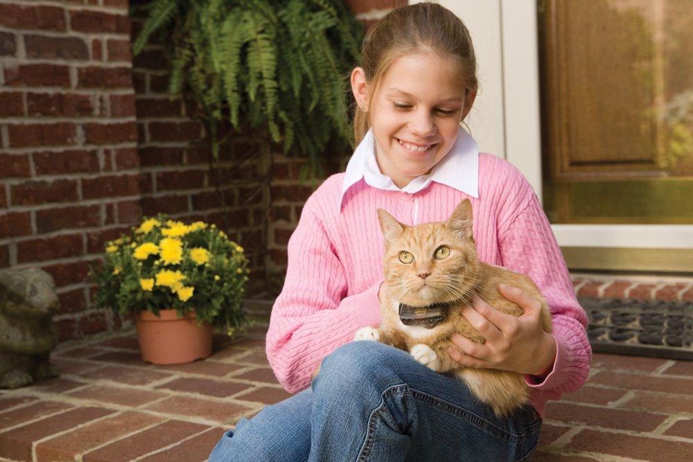 PetSafe Premium Cat Fence Extra Receiver by PetSafe