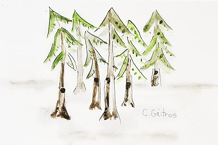 amazon com simple pine tree forest original watercolor painting