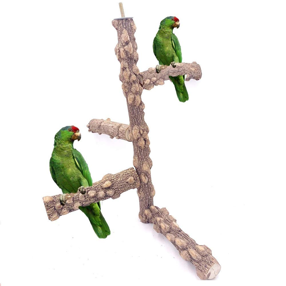 Borangs Bird Perch Natura Wood Stand Toy Branch for 3-4pcs Small Medium Parrots Cages Toy (Design 2) M by Borangs