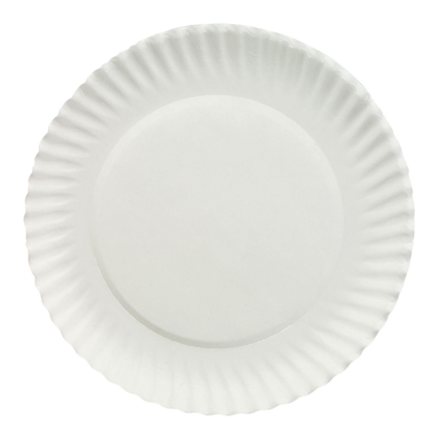 Amazon.com Dixie White 9  Economical Paper Plates (150 Plates) (150 9  Plates) Kitchen u0026 Dining  sc 1 st  Amazon.com & Amazon.com: Dixie White 9