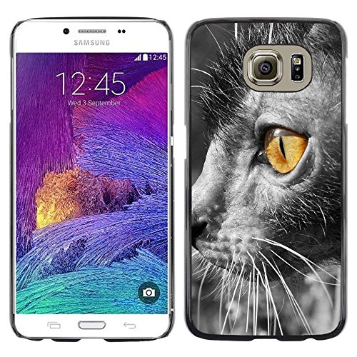 GIFT CHOICE / Slim Hard Protective Case SmartPhone Shell Cell Phone Cover for Samsung Galaxy S6 // Lykoi Bright Yellow Eye Grey Furry -