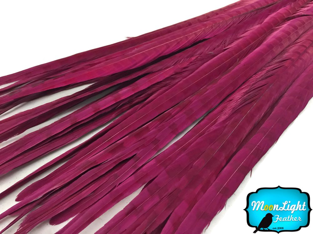 Pheasant Feathers, 50 Burgundy 20-22'' Ringneck Pheasant Tail Feathers
