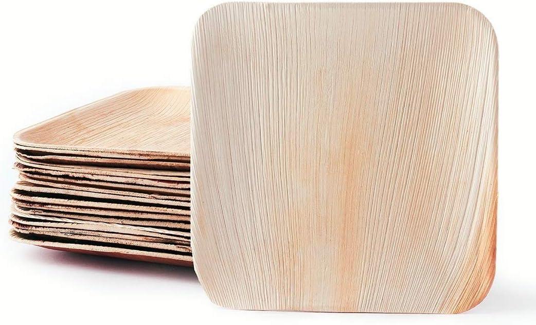 50x Palmblatt Einweg-Teller rund Bio Eco-Geschirr v Größen kompostierbar Party