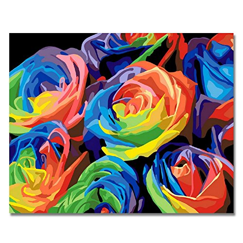 Paint By Number Walls (Rihe Paintworks Paint By Number Kits Colorful Rose Modern Wall Art 1620 Inch (Frameless))