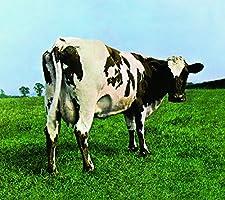 Atom Heart Mother (2016 Version) (Vinyl)