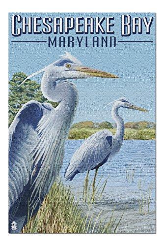 Heron Bay Wall - Chesapeake Bay, Maryland - Blue Heron (20x30 Premium 1000 Piece Jigsaw Puzzle, Made in USA!)