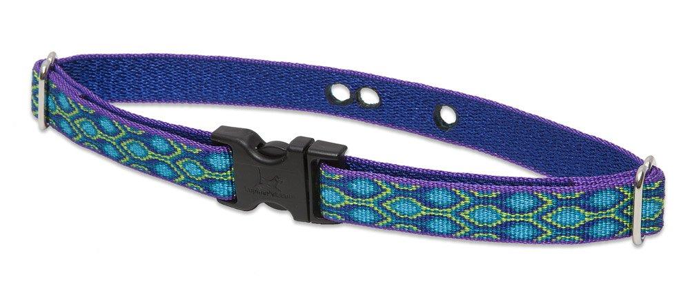 contatore genuino Lupine Lupine Lupine 3 10,2 cm Rain Song 9 – 30,5 cm contenimento Cinghia del Collare per Cani di Piccola Taglia  senza esitazione! acquista ora!