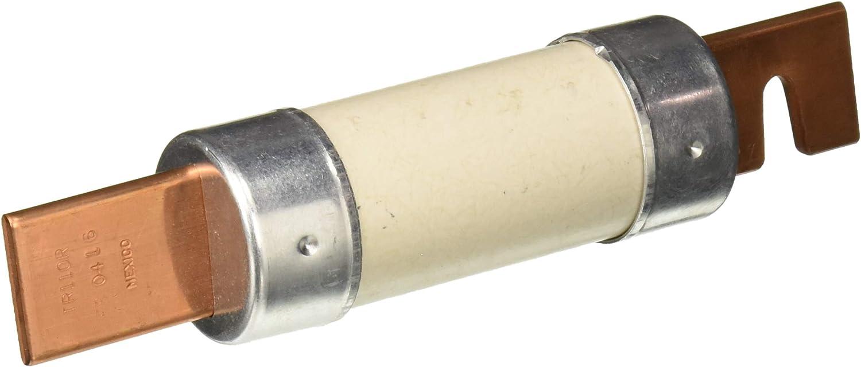 Mersen TR110R 250V 110A 7 1//8X1 9//10 Rk5 Time Delay Fuse Schaedler Yesco Distribution Inc.