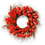 National Tree 24 Inch Branch Wreath with Red Tulips (RAS-HY55724W-R1)