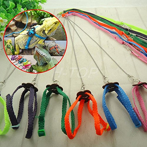 Bazaar Adjustable Pet Reptile Birds Lizard Harness Leashes Adjustable Multicolor Lead Light Soft Fashion
