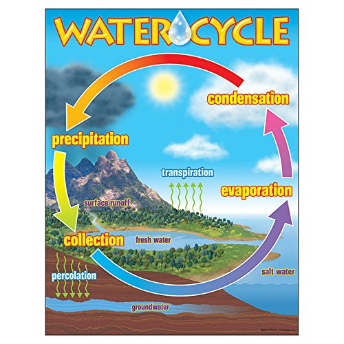 TREND enterprises, Inc. The Water Cycle Learning Chart, 17