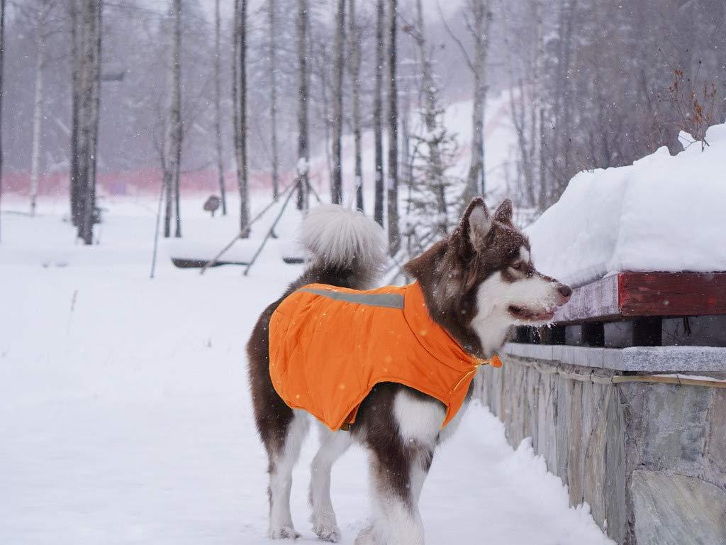Idepet Cappotto invernale per cani Impermeabile Gilet caldo Abbigliamento Cinturino riflettente Patchwork Giacca imbottita Felpa con cappuccio per cani di piccola taglia di taglia media