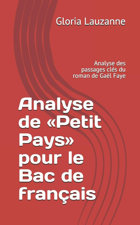 Analyse De «Petit Pays» Pour Le Bac De Français  Analyse Des Passages Clés Du Roman De Gaël Faye