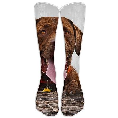 High Boots Crew Labrador Dog Compression Socks Comfortable Long Dress For Men Women