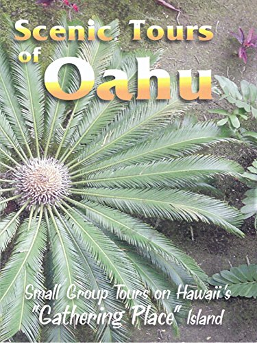 Scenic Tours Of Oahu (Best Places In Oahu)