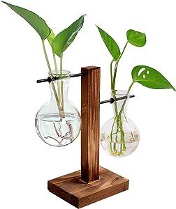 XXXFLOWER Plant Terrarium Wooden Stand, Hydroponic Planter Bulb Glass Vase Metal Swivel Holder Retro Air Plants Tabletop Home Garden Office Decoration