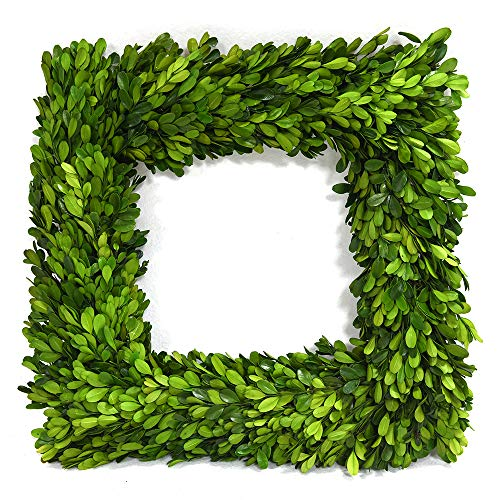 Square Natural Boxwood Wreath 14 Inches