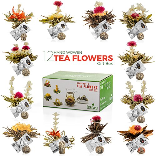 Tealyra - 12 pcs Blooming Flowering Tea - 12 Variety Flavors of Finest Blooming Teas – All Tea Balls Individually Sealed - Great Gift Bloom Teas Box (Blooming Flowering)