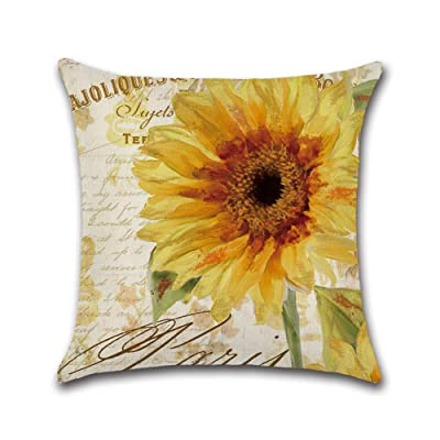 Alician Hand Artist Sunflower Series Printing Throw Pillow Cover Without Filling Inner Sunflower 02 4545cm: Home & Kitchen