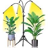 Grow Light Abonnylv 60W Led Tri Head Floor Plant Lights for Indoor Plants with Stand Full Spectrum Lamps Sunlike for Gardenin