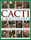 #8: The Practical Illustrated Guide to Growing Cacti & Succulents: The Definitive Gardening Reference On Identification, Care And Cultivation, With A Directory Of 400 Varieties And 700 Photographs