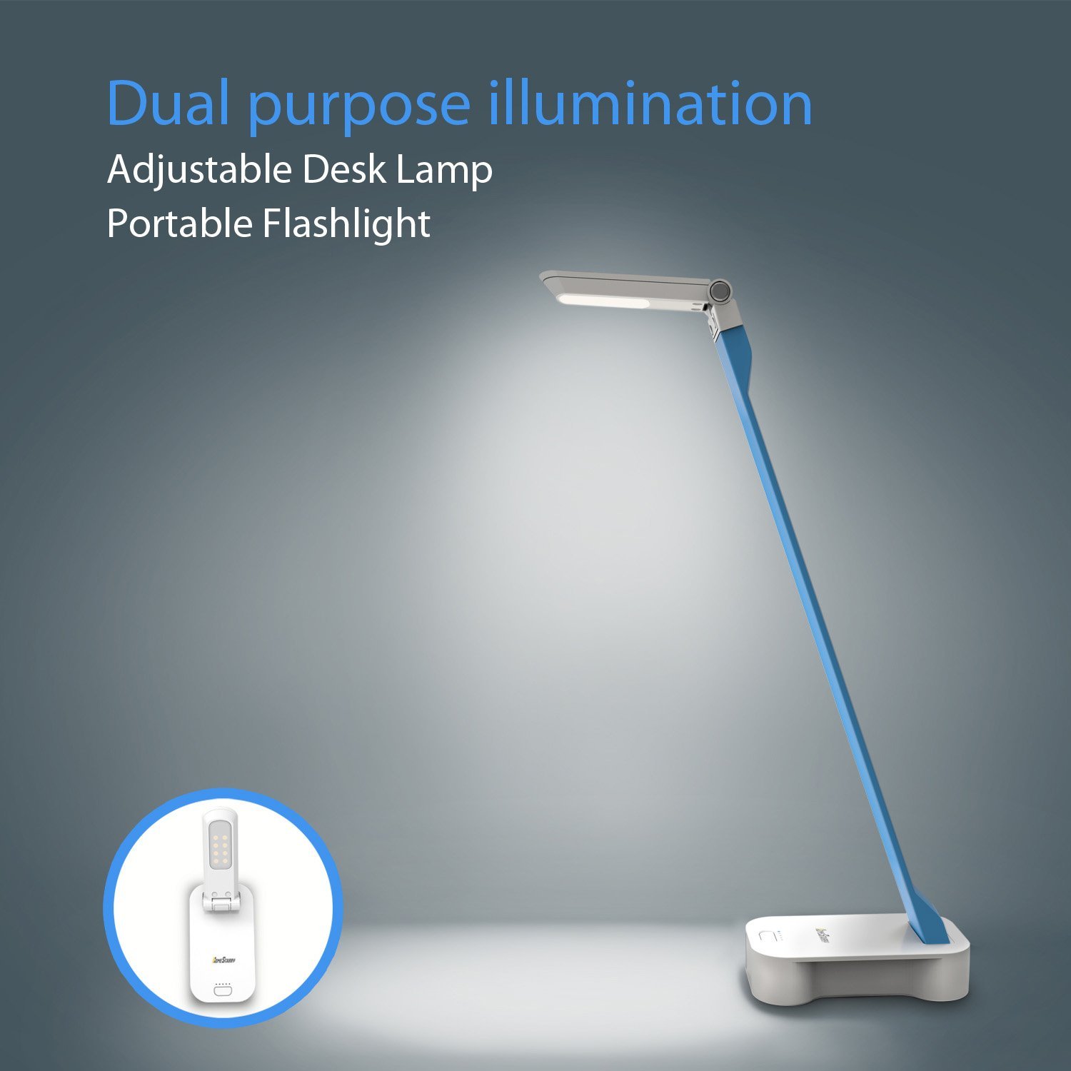 Homstarry LED Desk Lamp Portable Table Lamp, Multi-functional small ...