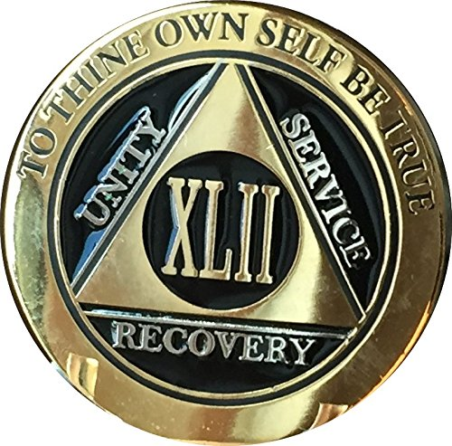 Recoverychip 42 Year AA Medallion Elegant Black Gold Silver Bi-Plated Alcoholics Anonymous - 42 Collection Medallion