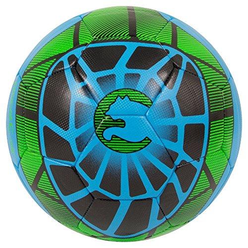 ProCat by Puma Soccer Ball - Black/Blue/Green - (Size 4), Multi-Colored