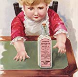 Scotts Emulsion Cod Liver Oil Consumption Cure Victorian Advertising Trade Card