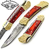 Red Wood Brass Double Bloster Beautiful Screemshw Work 7.6'' Custom Handmade Damascus Steel Back Lock Folding Pocket Knife 100% Prime Quality+ Leather Sheath Case
