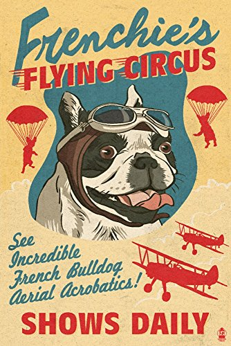 French Bulldog - Retro Flying Circus Ad (9x12 Art Print, Wall Decor Travel Poster)
