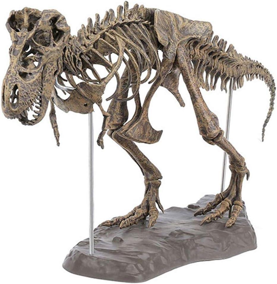 CAMLEO Dinosaur Skull Sculptures Tyrannosaurus Skeleton Statue Home Decor Education Animal Figurine Model Ornament