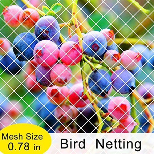 Agfabric Garden Bird Netting Anti Bird Protection Net Fruit Vegetables Flower Garden Pond Netting, 10x36ft, White (White Tree Cherry)