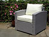 Outdoor Patio Lounge Living Chair w/cushion Garden Furniture Backyard Resin Wicker . Gray Color