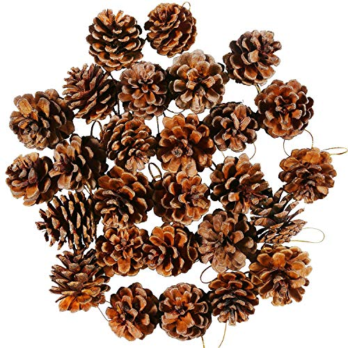KISEER 27 Pieces Mini Pine Cones Christmas PineCones Natural Hanging Ornament Pine Cones Pendant with String for Crafting, Wedding, House Decor, Tag Decoration (4-5cm)
