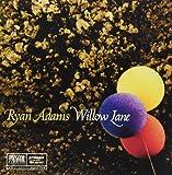 Willow Lane 7