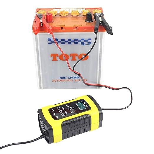 LIOOBO Cargador de batería para Motocicleta y Coche y ...