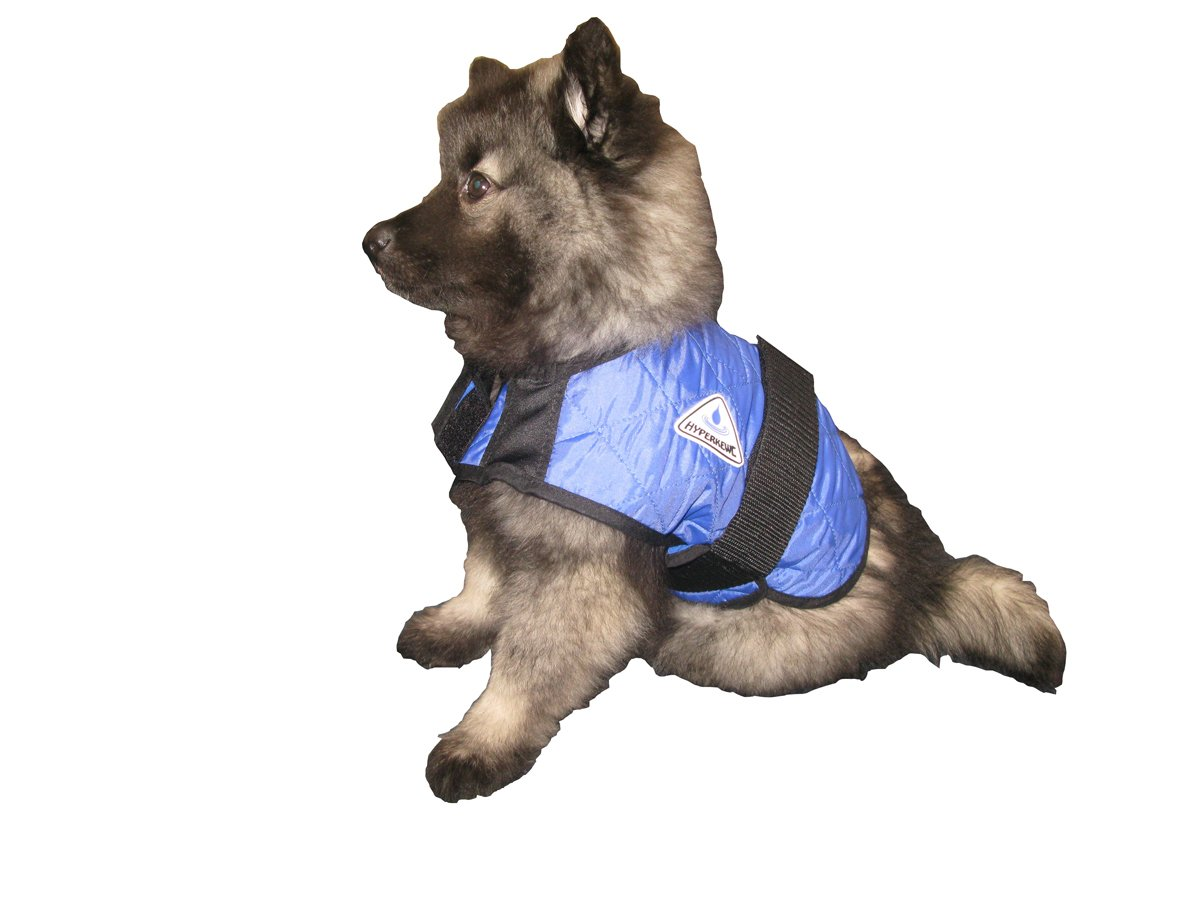 HyperKewl Evaporative Cooling Dog Coat, Small, Blue by HyperKewl