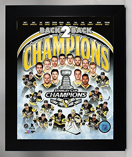 Framed Pittsburgh Penquins Sidney Crosby & Evgeni Malkin Team Collage! 2017 Stanley Cup Champion 8x10 Photo Collage Picture (coll) (Framed Pittsburgh Sidney Penguins Crosby)