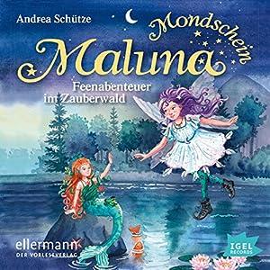 Feenabenteuer im Zauberwald (Maluna Mondschein 5) Hörbuch