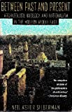img - for Between Past and Present: Archaeology, Ideology, and Nationalism in the Modern Middle East book / textbook / text book