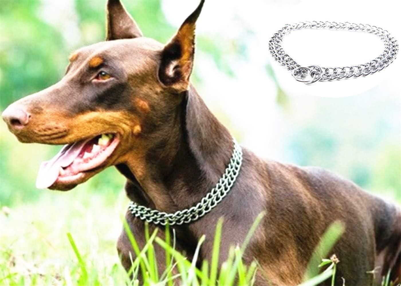 JYHY - Collar para Perro, Cadena en Forma de P y Cadena de Metal de Hierro y Doble Fila, para Entrenar a los Perros pequeños, medianos y Grandes