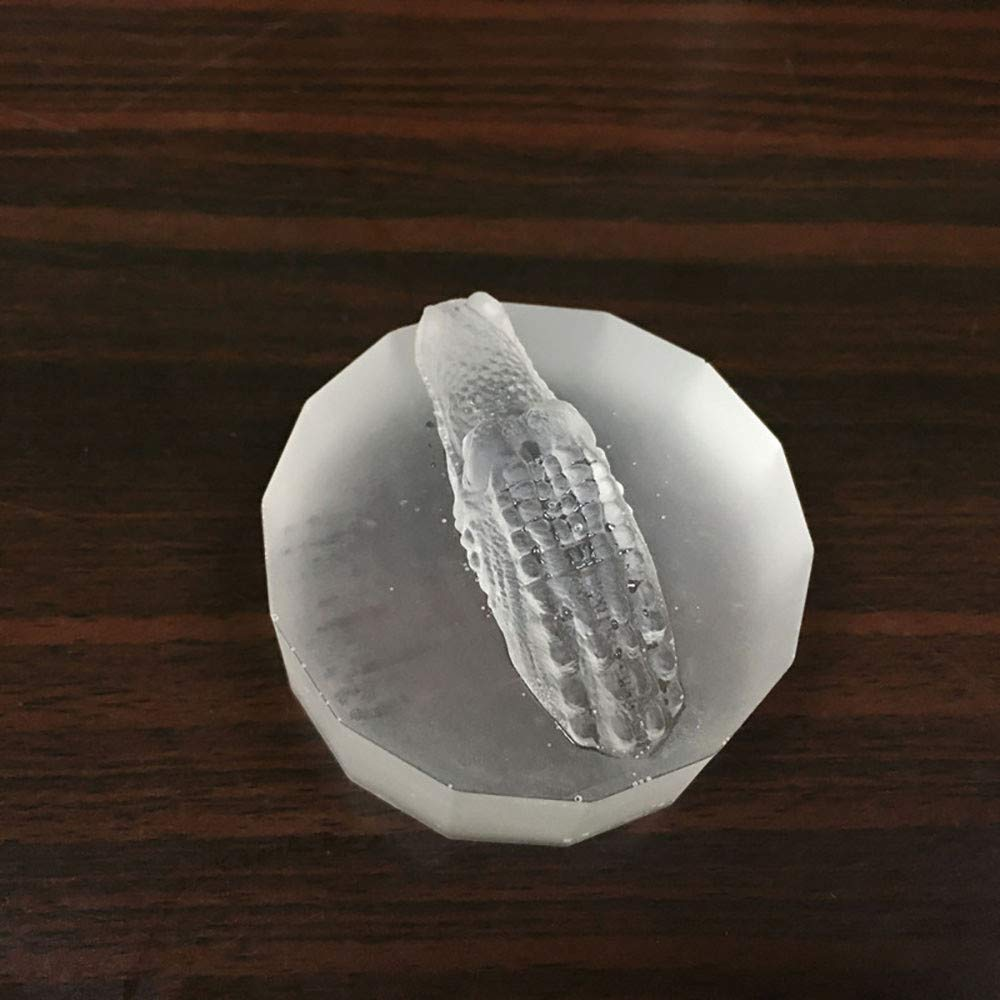 Amazon.com: Gessppo Crocodile Shape Ice Mould Lattice Freeze Ice Tray Pudding Jelly Maker Mold Ice Cube: Home & Kitchen
