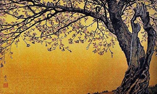 Japanese Art Print Sanbu Zaki Cherry Blossoms by Yoshida Toshi