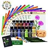 FolkArt 99228 Donna Dewberry Flowers of The Month Let's Paint Kit