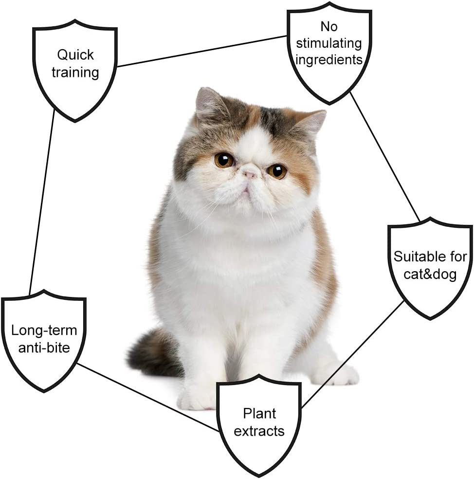Educaci/ón Spray para Perros y Gatos SEGMINISMART Repelente para Gatos,Cat Scratch Deterrent Spray,Spray de Entrenamiento para Gatos,Cat Training Spray