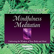Mindfulness Meditation: Cultivating the Wisdom of Your Body and Mind Discours Auteur(s) : Jon Kabat-Zinn Narrateur(s) : Jon Kabat-Zinn