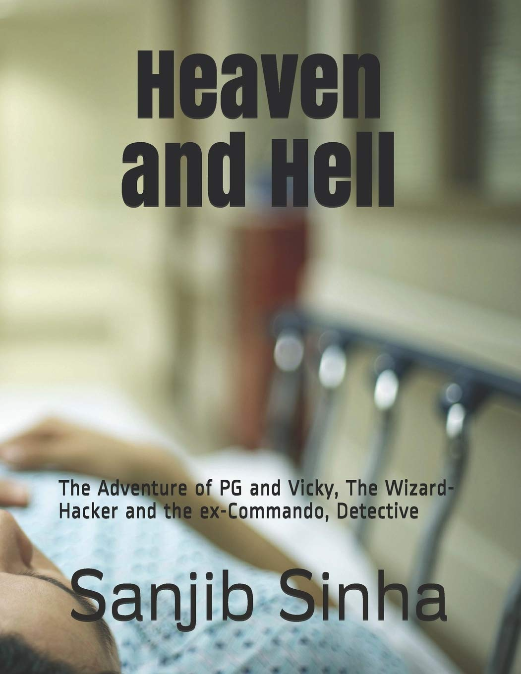 Heaven And Hell The Adventure Of Pg And Vicky The Wizard Hacker