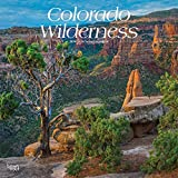 Colorado Wilderness 2019 12 x 12 Inch Monthly Square Wall Calendar, USA United States of America Rocky Mountain State Nature (English, French and Spanish Edition)